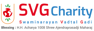 SVG Charity