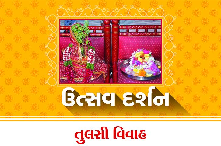 swaminarayan, swaminarayan Vadta Gadi, Tulsi Vivah – (તુલસી વિવાહ)