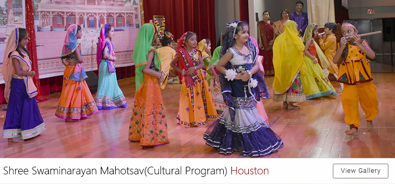 Houston Cultural Program