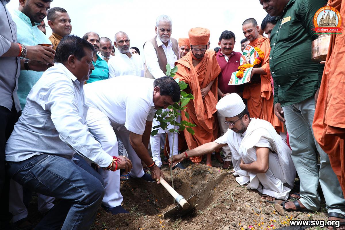 Sardhar Kalptaru Campaign (Vrikshropan) 30 Aug 2019 (40)