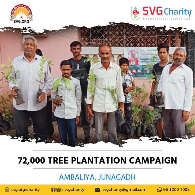 72000 tree plantation By Ambaliya Junagadh 25