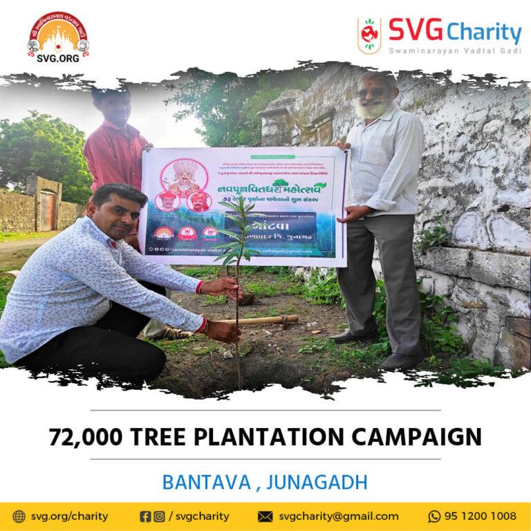 SVG Charity 72000 Tree Plantation Campaign – Bantava Ta. Manavadar Di. Junagadh Aug 2021