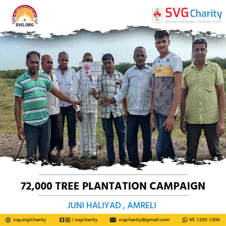 SVG Charity 72000 Tree Plantation Campaign – Juni Haliyad Ta. Bagasara Di. Amreli Aug 2021