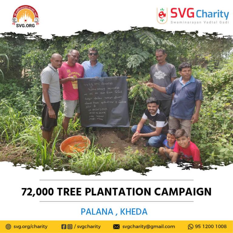 SVG Charity 72000 Tree Plantation Campaign – Palana Ta. Vaso Dist. Kheda Aug 2021
