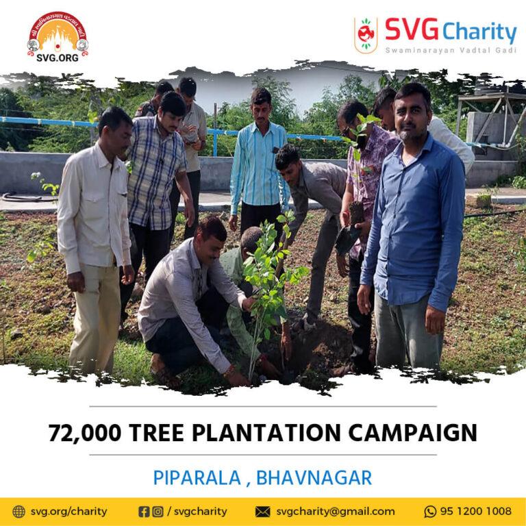 SVG Charity 72000 Tree Plantation Campaign – Piparala Dist. Bhavnagar Aug 2021