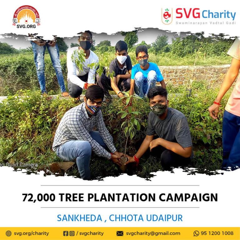 SVG Charity 72000 Tree Plantation Campaign – Sankheda Dist. Chhota Udaipur Aug 2021 1