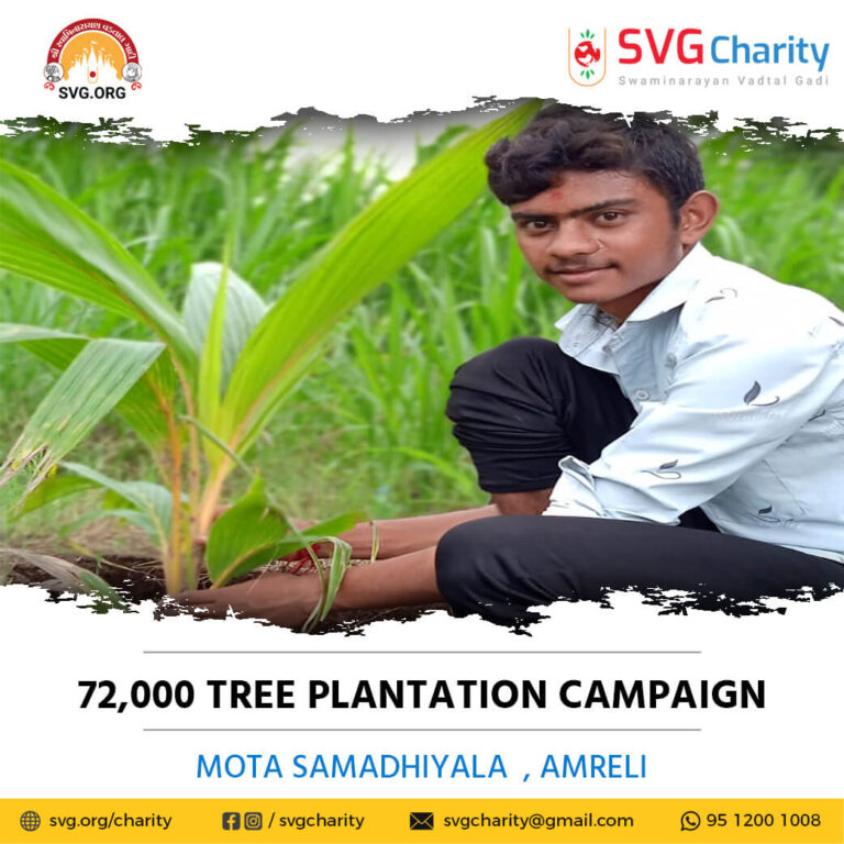 SVG Charity 72000 Tree Plantation Campaign Mota Samadhiyala Ta. Khambha Dist. Amreli Aug 2021